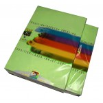 Papel A4 verde 80 g. Color Plus
